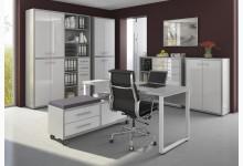 6tlg. Arbeits- & Bürozimmer Mod.MJ332 Platingrau - Weißglas