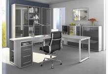 5tlg. Arbeits- & Bürozimmer Mod.MJ333 Platingrau - Grauglas