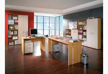 Büro- & Arbeitszimmer 10-teilig Mod.GM153 Buche - Birke